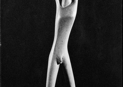 המנצח, 1956, עץ אשור