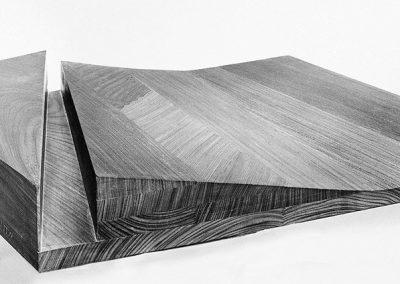 נוף, 1974, עץ טיק