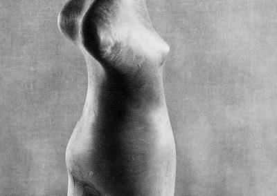 נערה, 1956, עץ עוזרר