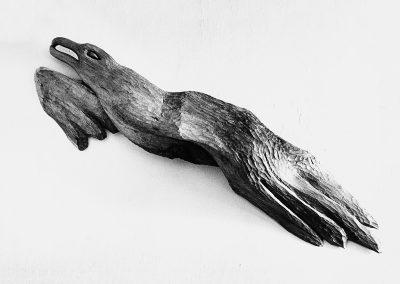 ציפור, 1959, עץ אלון